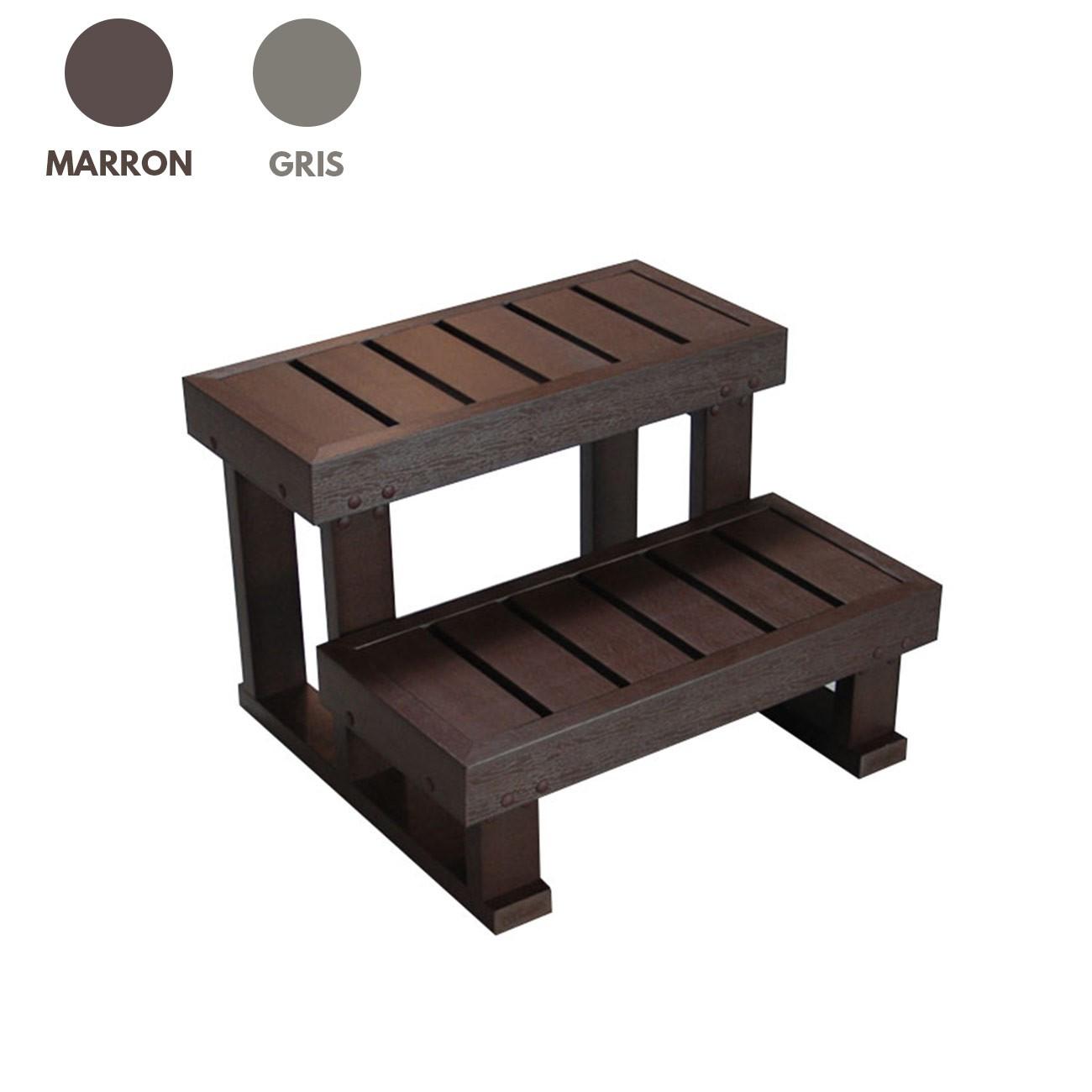escalier 2 marches pour spa jacuzzi. Black Bedroom Furniture Sets. Home Design Ideas