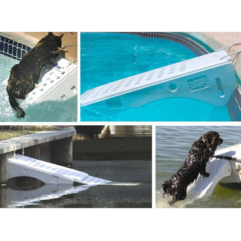 Rampe piscine animaux skamper ramp bain et confort for Piscine pour grand chien